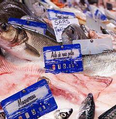 sete 240x245-Halles-poissons-N131_large